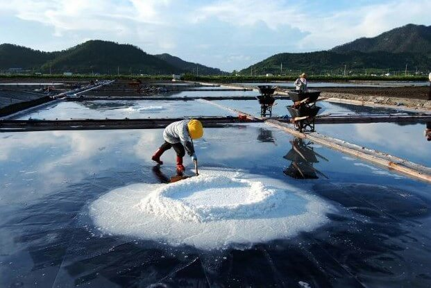 Crystallized sea salt, is collected in the salt pond of the Yellow Sea with a push rod.